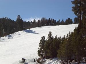 Ski Trip (80)